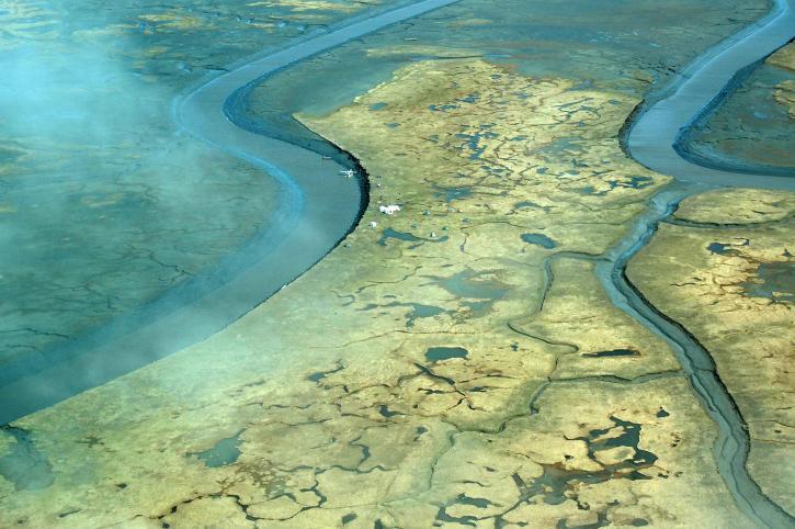 močiare, rieky, delta