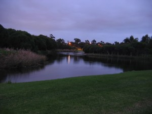 à travers, Carine, marais, aube, occidental, Australie