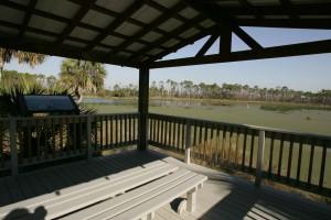 wetland, observation, deck