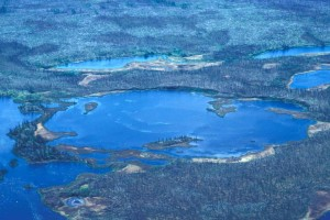 zones humides, étangs, été, scénique