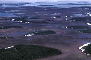 wetlands, air