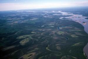 넓은 강, 흐르는, 습지대