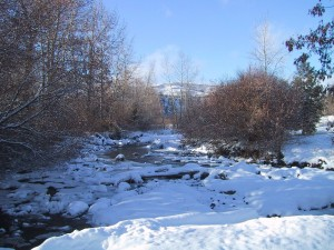 creek, covered, ice, snow, winter