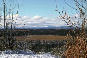 hiver, scénique, ressort
