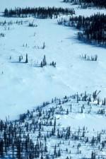 collines, forêts, hiver