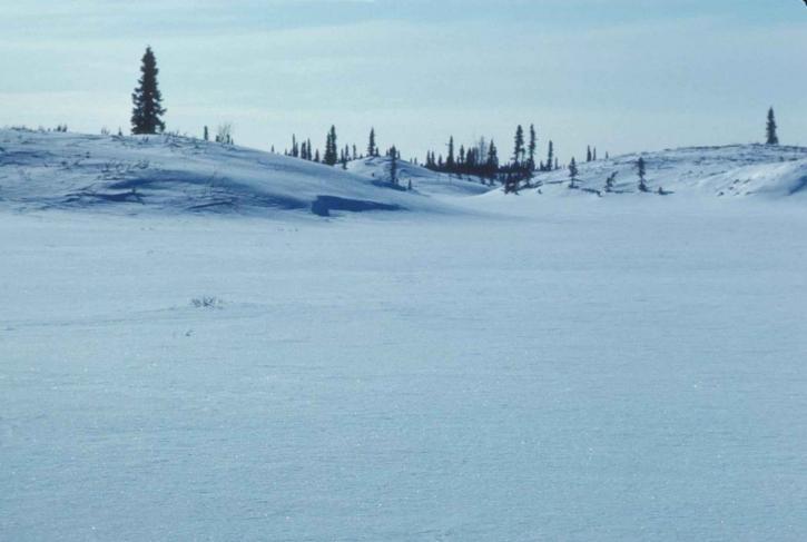 collines, hiver, janvier