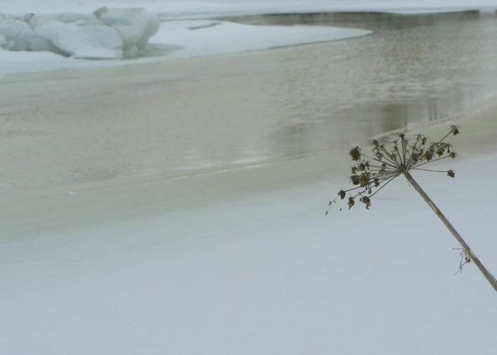 melting, ice, landscape