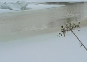 melting, ice, water