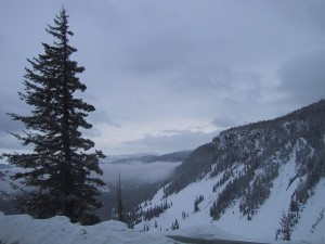 mountain, overlook, pine, tree, snow, clouds