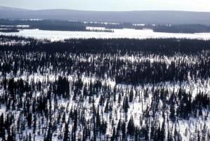 rivière, bassin, hiver