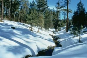 hiver, scénique, Arizona