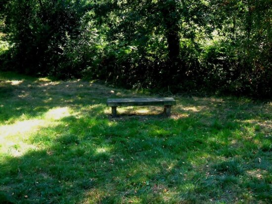 bench, clearing