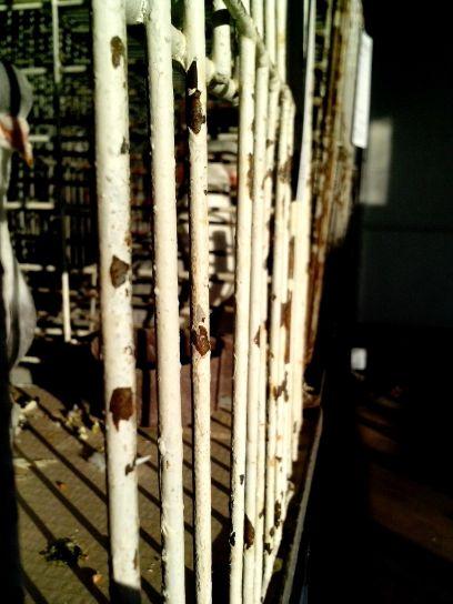metal, cage, lattice
