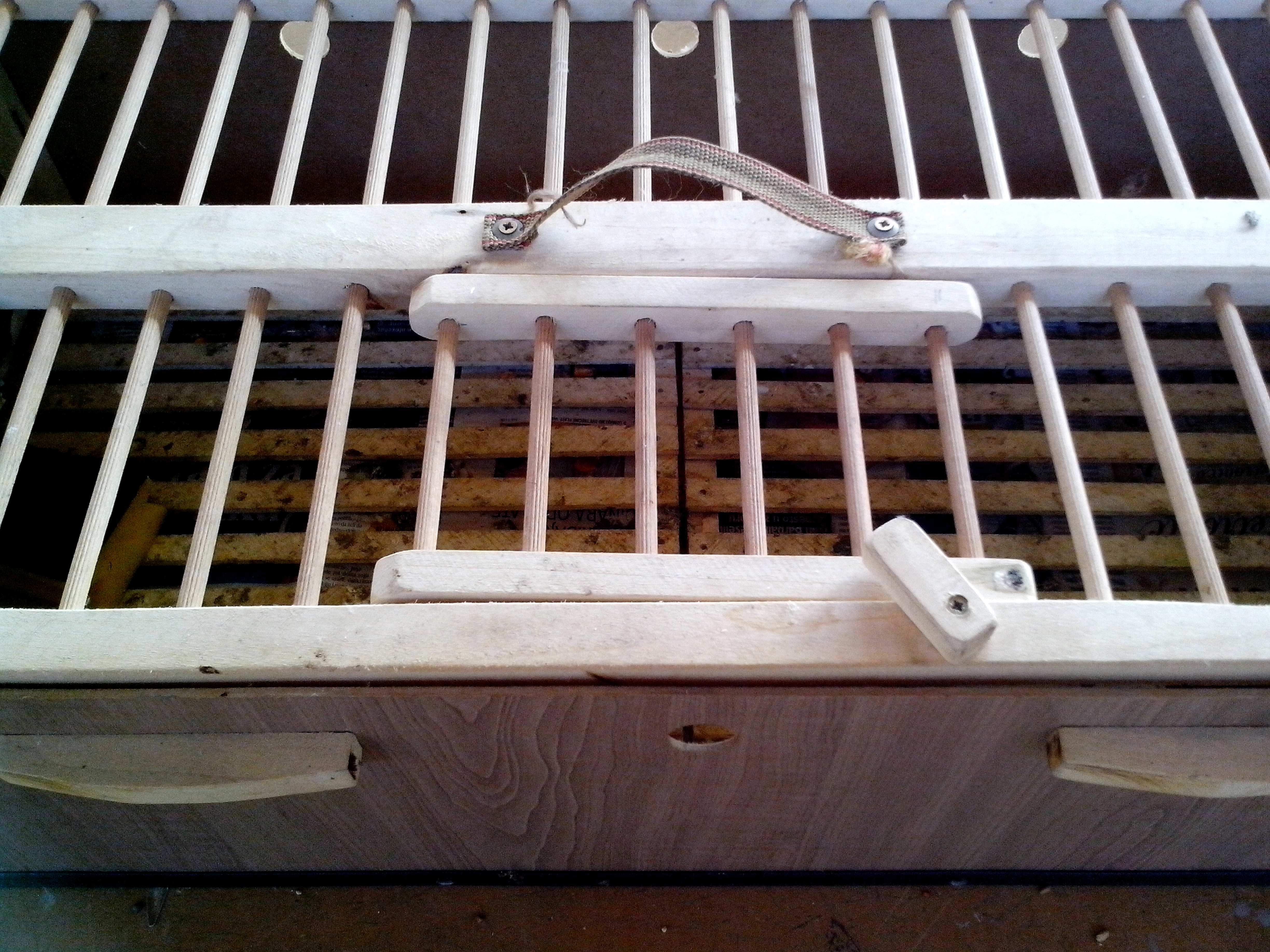 Free photograph; wooden, transport, cage, small, animals