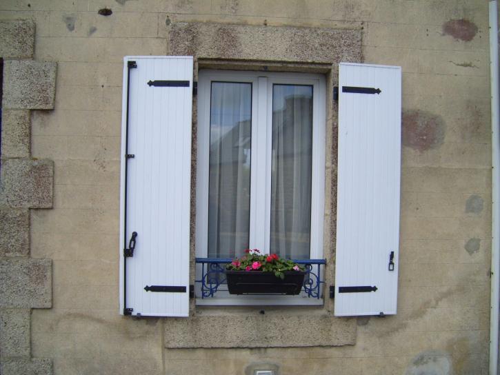 fleurs, fenêtre, shooter