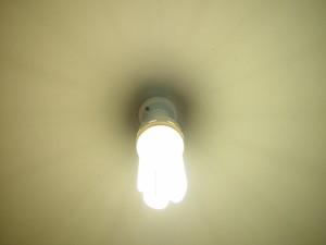 เนลสัน แบรนด์ ขนาดกะทัดรัด ฟลูออเรสเซนต์ โคมไฟ