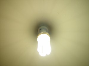 nelson, brand, compact, flourescent, lamp