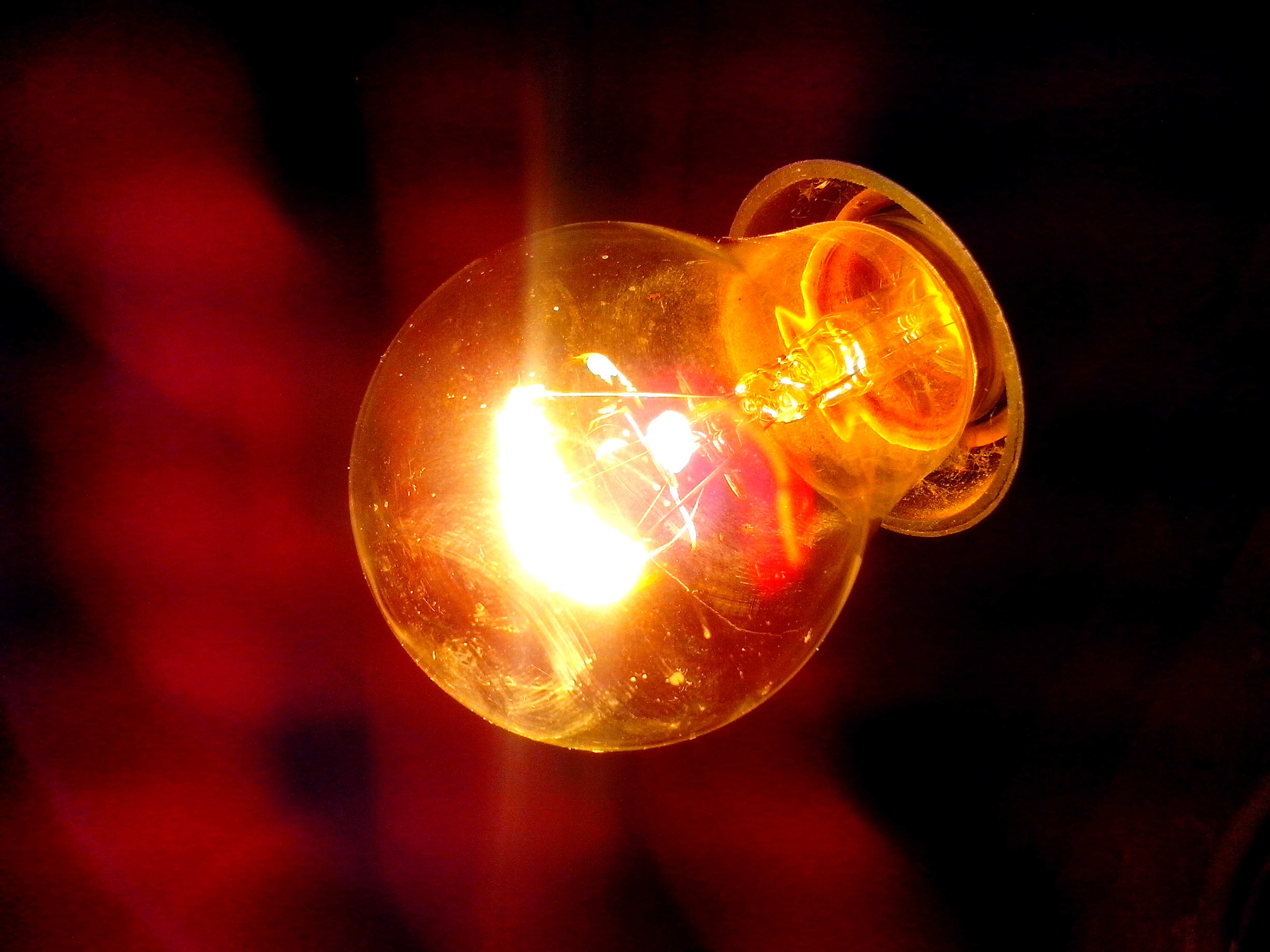 Free photograph; electric, bulb, light