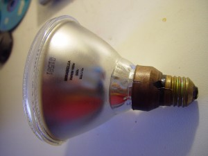 floodlamp, bulb, screw, fitting