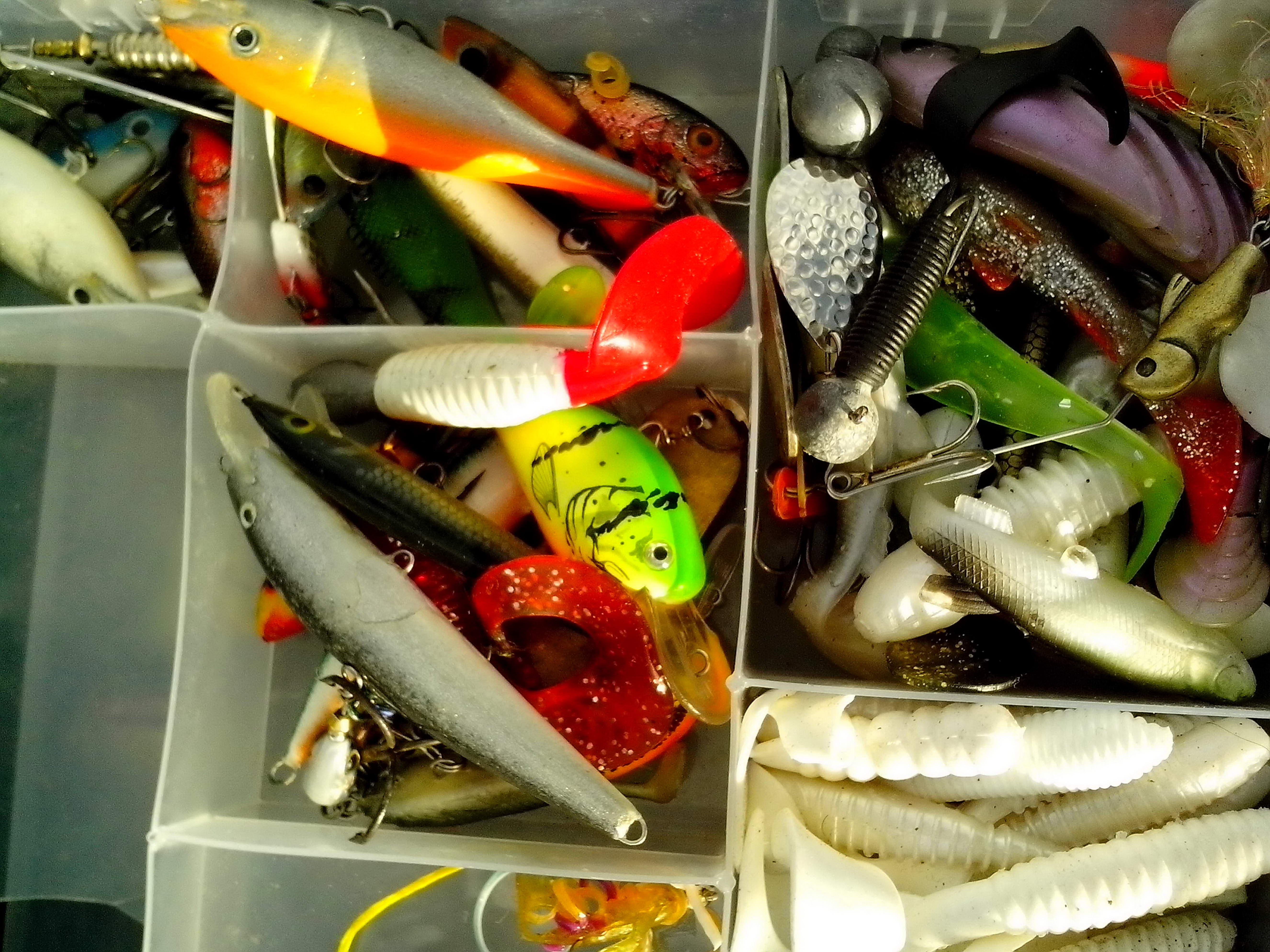 Free photograph; equipment, sport, fishing, lures, hooks