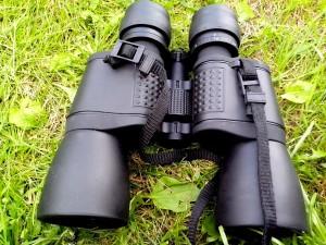 hunting, binoculars