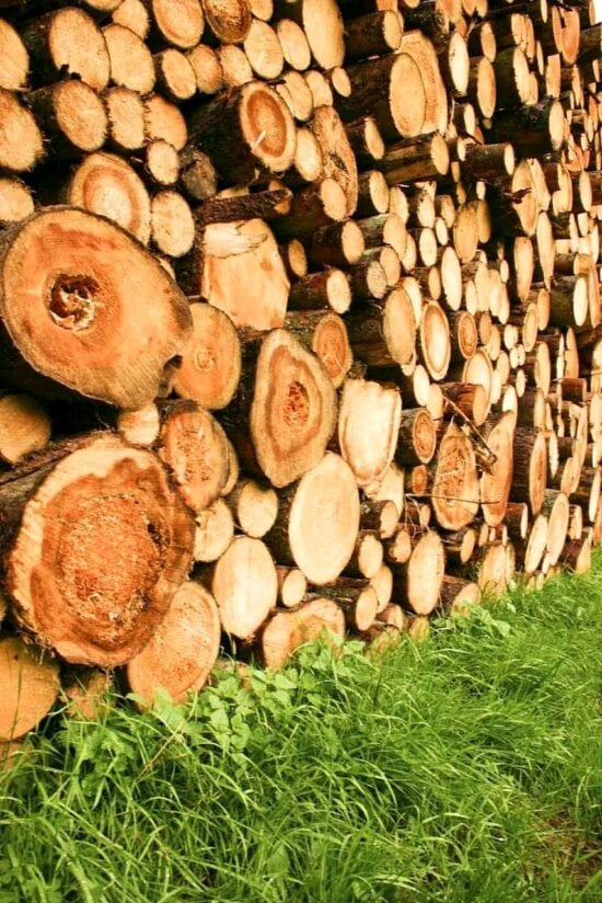 logs, high, detail, photo