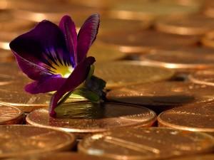penny, pièces de monnaie
