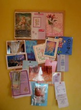 avis, mémoire, carte
