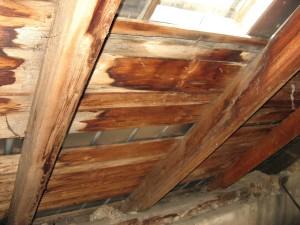 vieux, en bois, toit