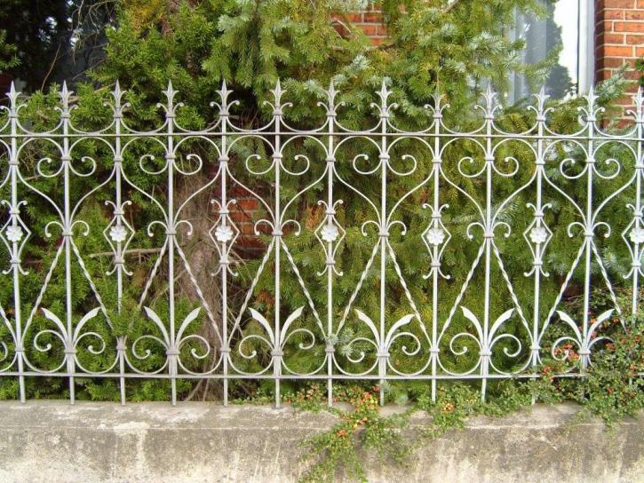 Ornate fence iron