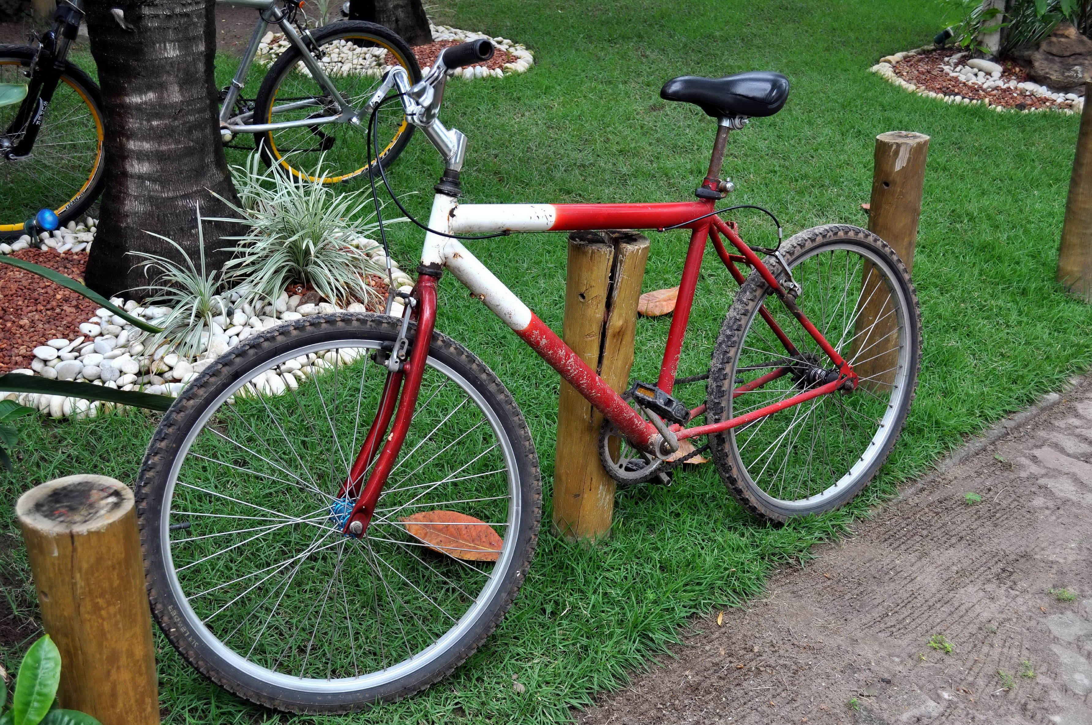 Free photograph; red, mountain, bike