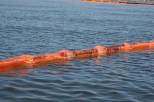 rusty, barrel, floating, water