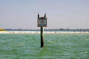 oiseau, sanctuaire, signe, eau