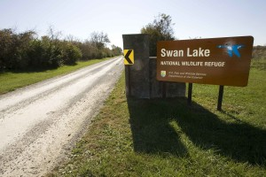 entrance, sign, swan, lake