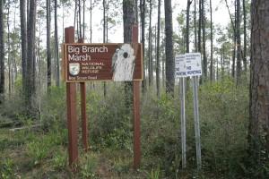 entrance, sign, big, branch, marsh, wilderness, refuge