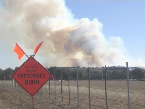 prescribed, burn, sign