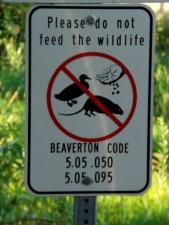 sign, advising, feeding, wildlife