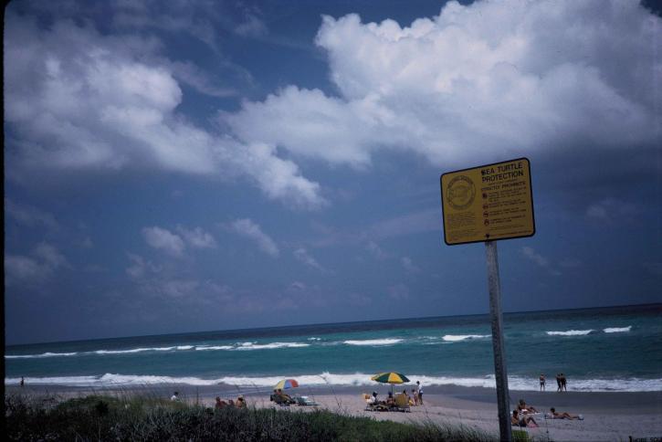 signe, plage, hobe, son, désert, refuge