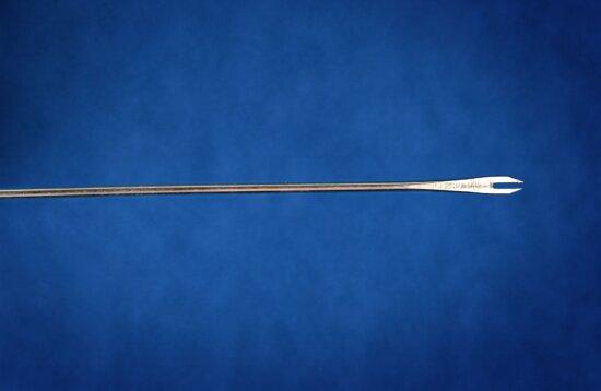 bifurcated, needle, vaccinate, smallpox, vaccine