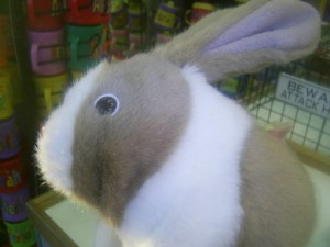 battery, operated, toy, bunny, toy, store