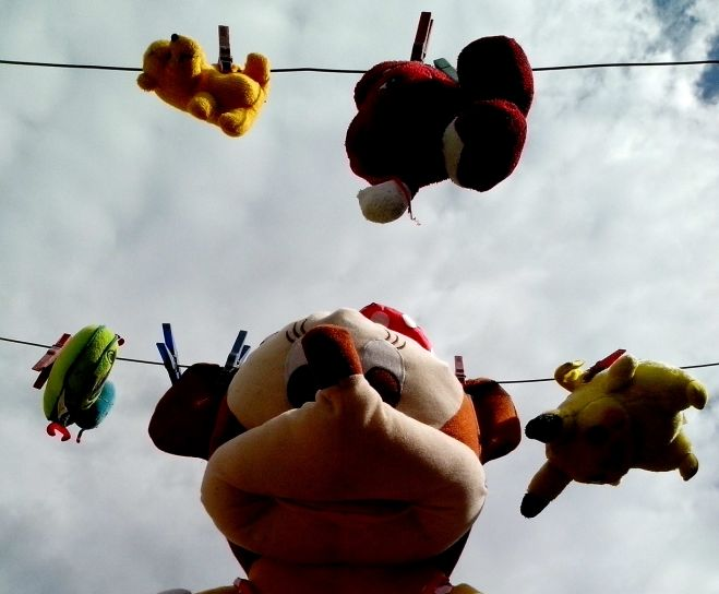 stuffed, toys, children, were, dried, wire, after, washing