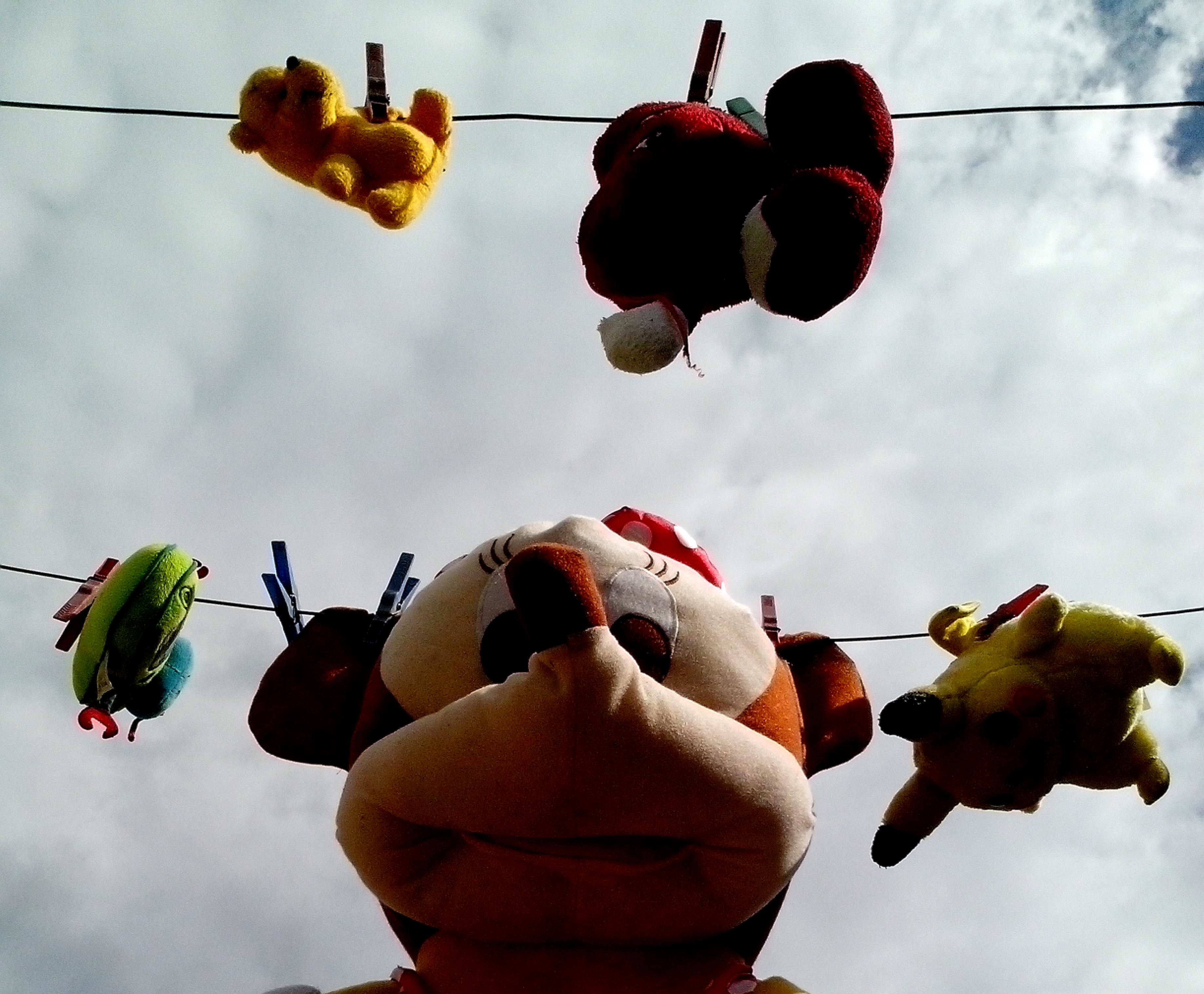 Free photograph; stuffed, toys, children, were, dried, wire, after, washing