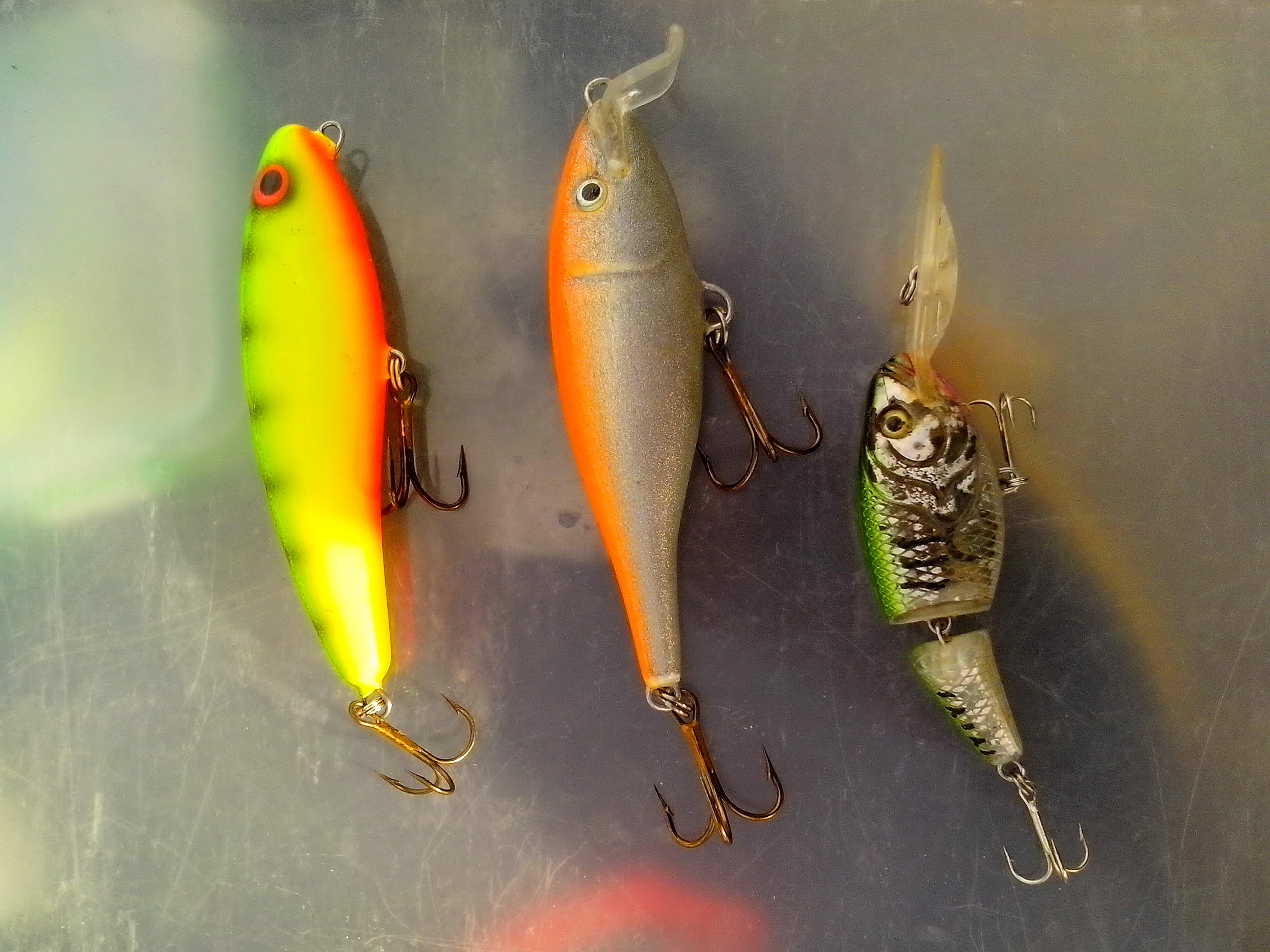 Free photograph; ugly, duckling, crankbaits