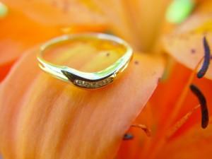 bröllop, ring