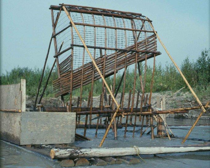 bois, de subsistance, le poisson, la roue, rivière