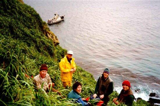 ryhmä ihmisiä hill, coast, nauttia, panorama, ocean