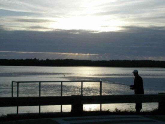 man, photographed, fishing