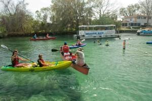 adultes, les enfants, profiter, beau, jour, kayak, clair, lac