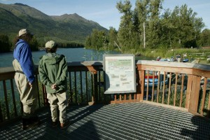 anglers, read, life, cycle, red, sockeye, salmon
