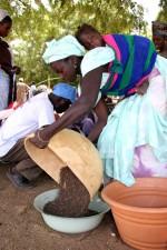fair, Touba, Toul, Senegalese, merchant, infant, strapped, back, exproduce